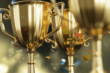 Auszeichnungen Weingut Mad Trophäe